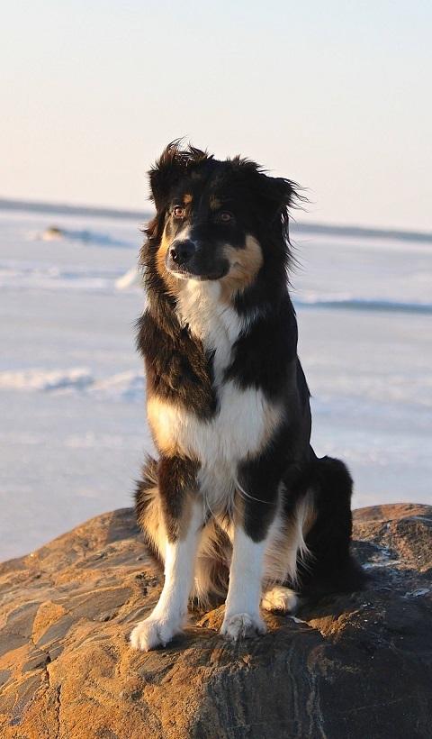 Ranya, kuva: Päivi Erkkilä